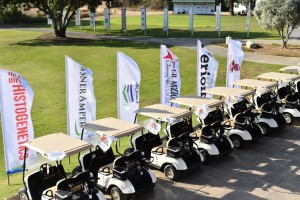 golf Israel 2016 carts w logos 15304448_755096737976598_7143135351909858764_o